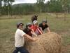 転がしているのは馬の餌。後ろから狙われている。
