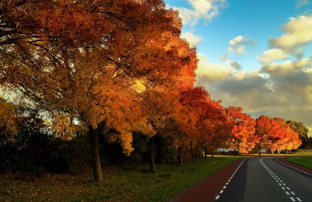 秋らしく涼しくなってきて英語勉強モードに!