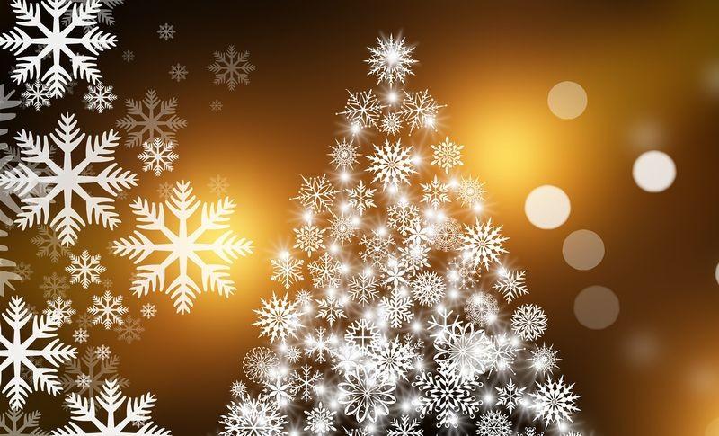クリスマスの写真・動画